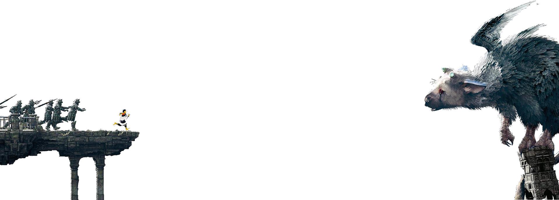 tlg_opacity2